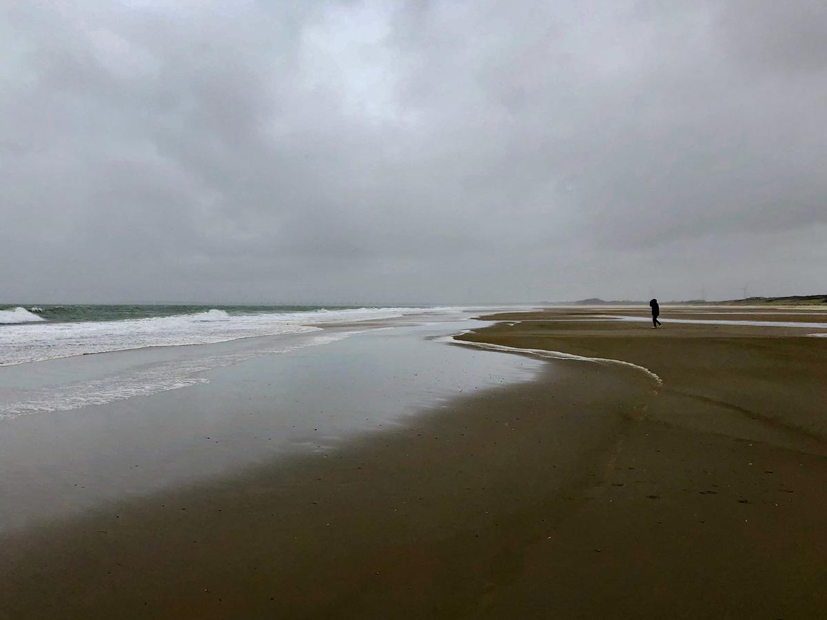 Ray walking at Noordzeestrand
