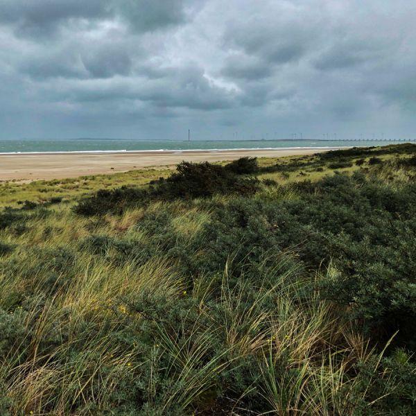 dramatic sky above dunes