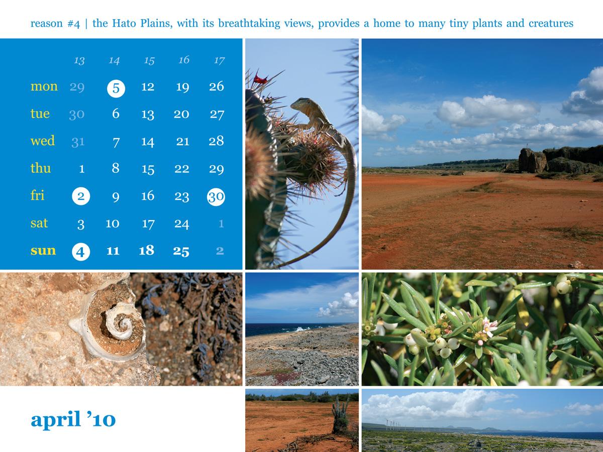 Calendar 2010 April Hato plains