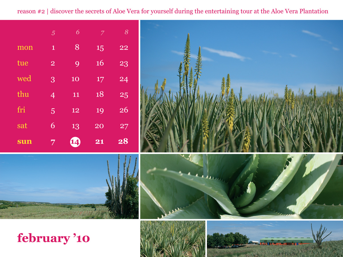 Calendar 2010 February Aloe Vera
