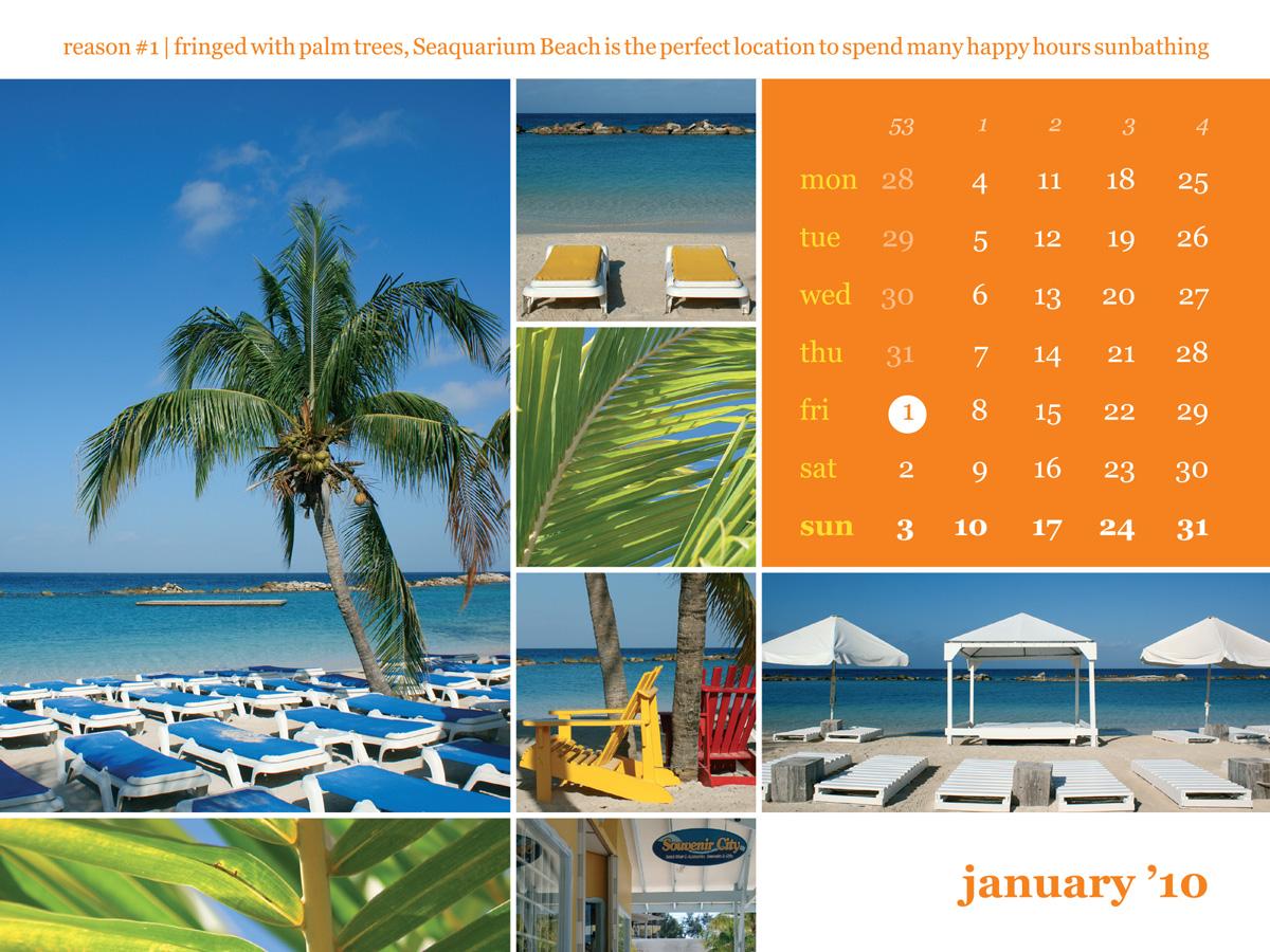 Calendar 2010 January Wet & Wild