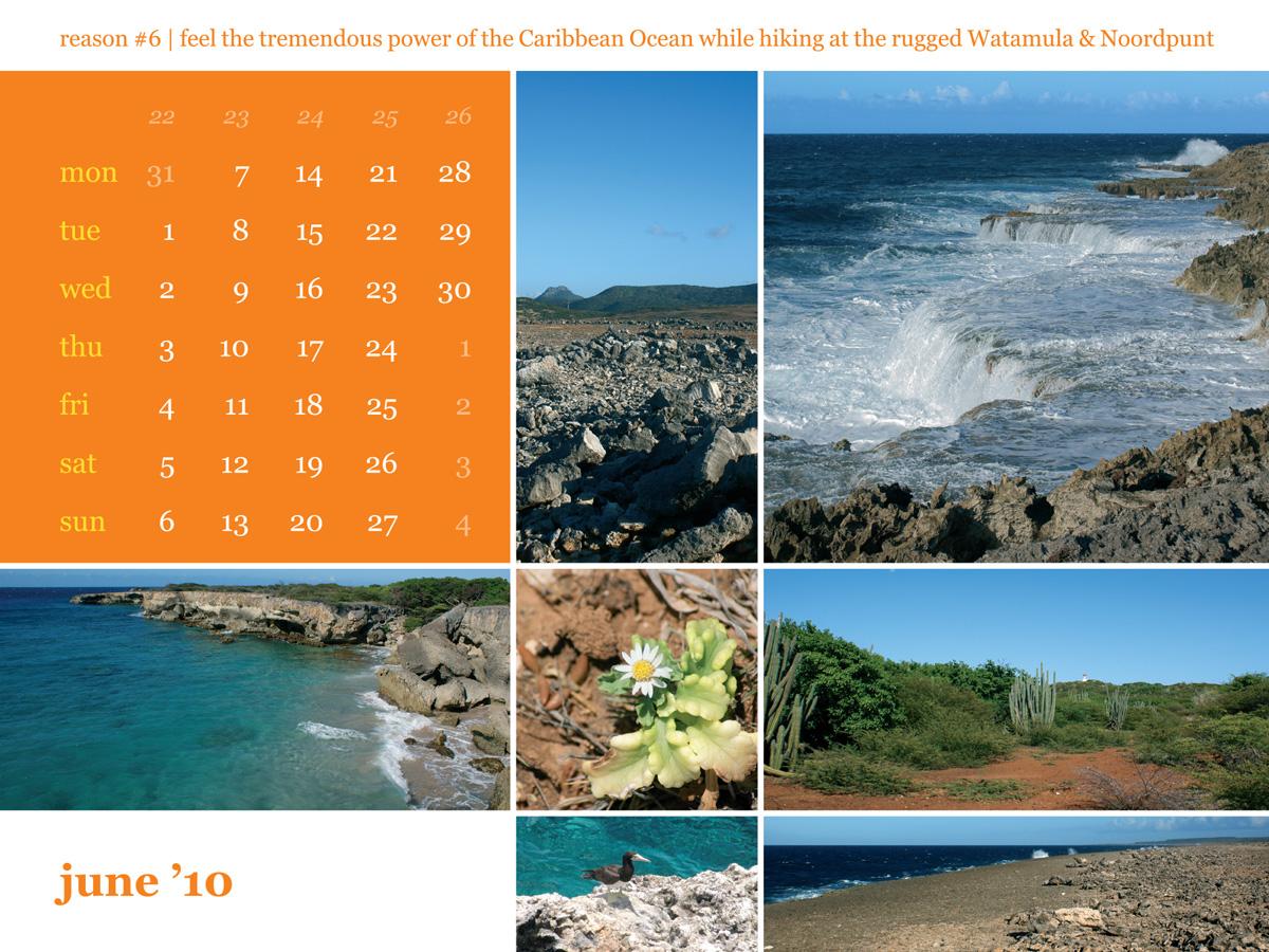 Calendar 2010 June Santu Pretu
