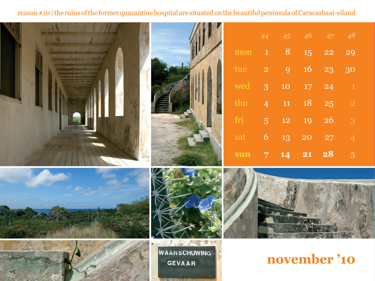 Calendar 2010 November Caracasbaai