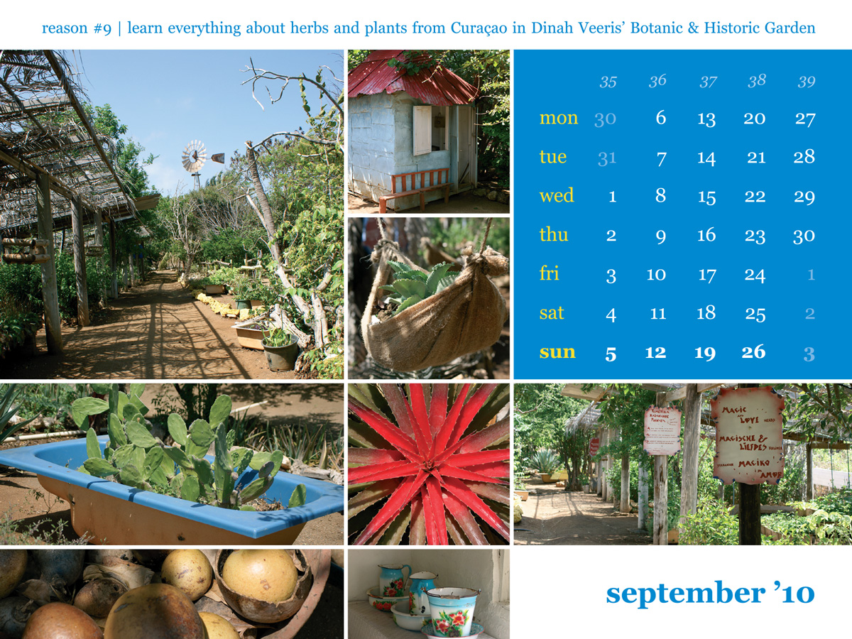 Calendar 2010 September Dinah Veeris