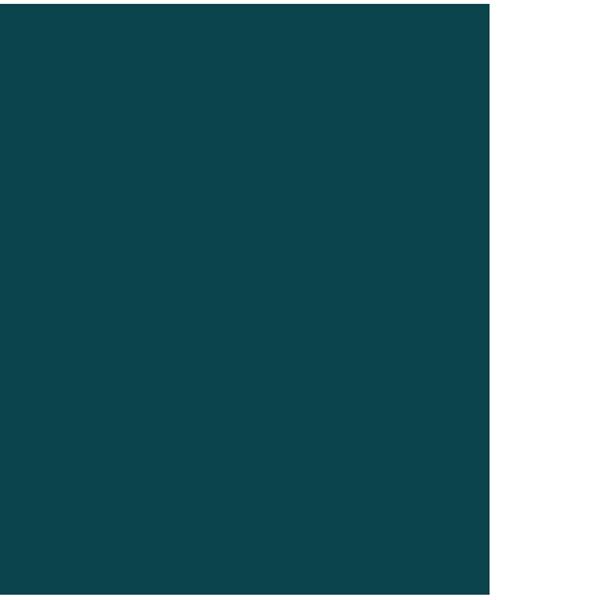 flower oleander