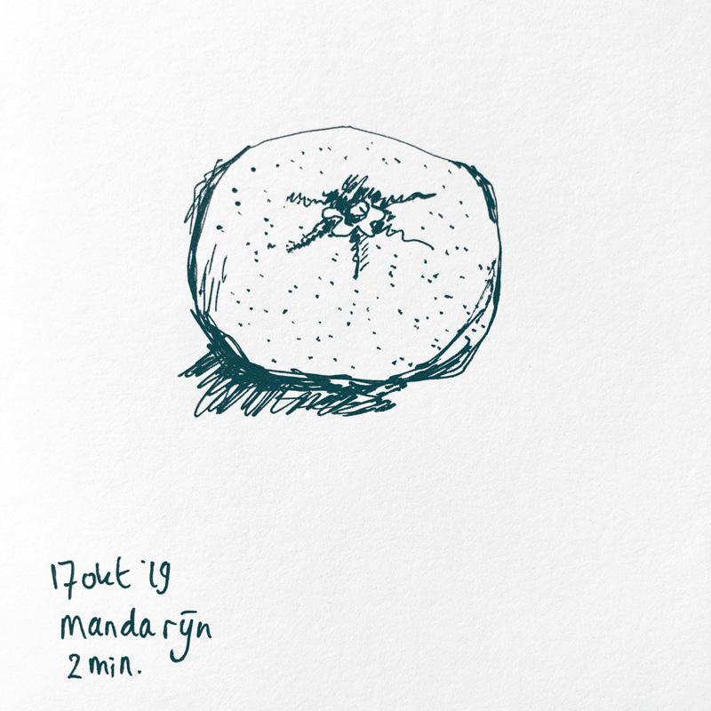 drawing mandarin