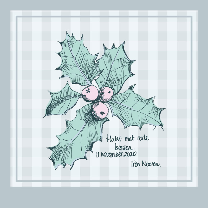 illustration christmas holly with berries
